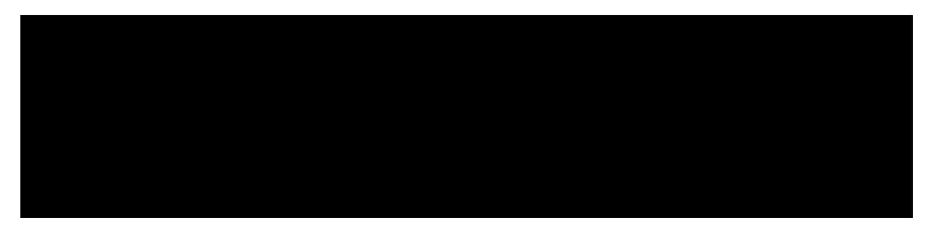 Nessmann Metallbau
